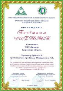 Почетный диплом 2013